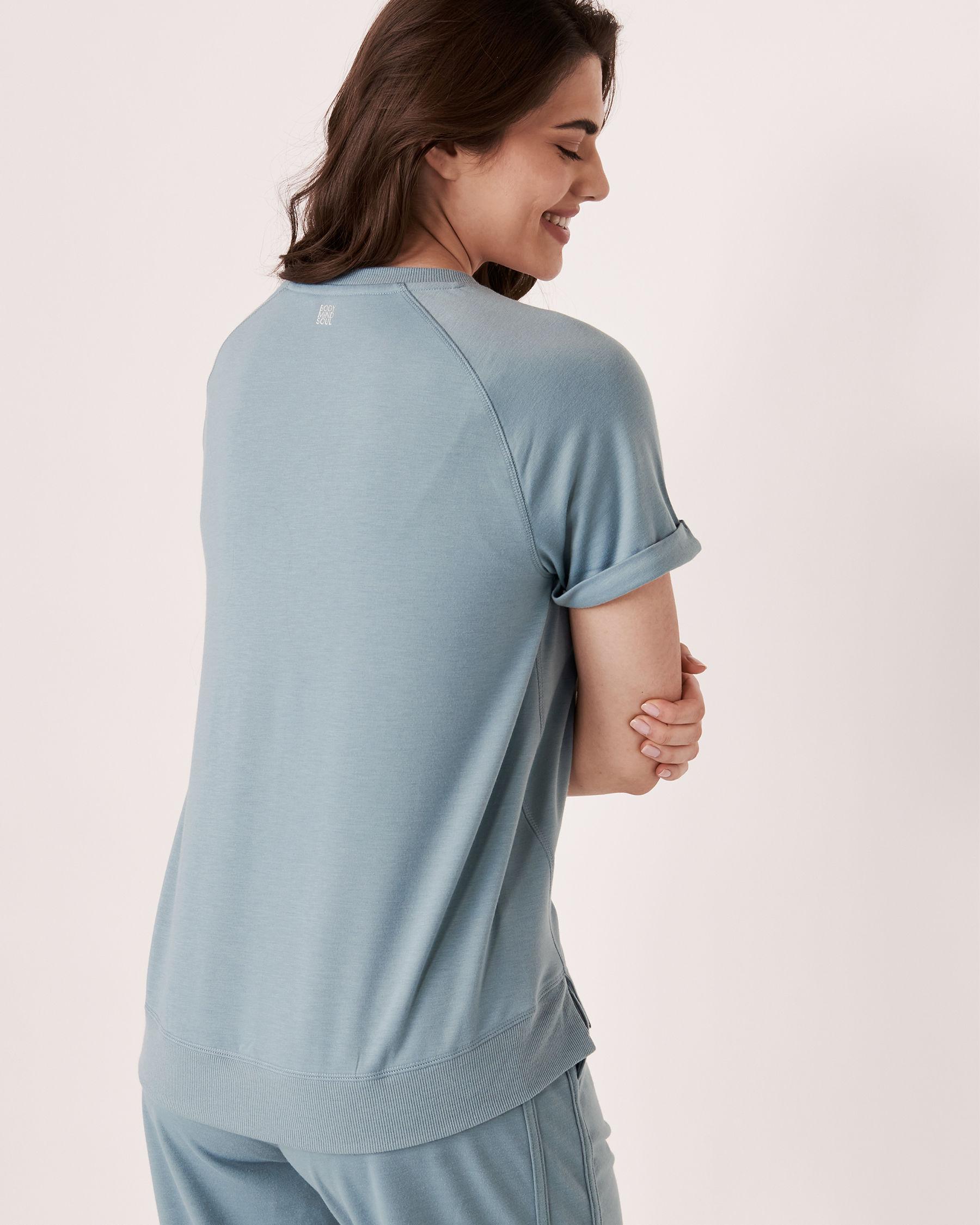 LA VIE EN ROSE Raglan Sleeve Crew Neck T-shirt Blue grey 50100005 - View2